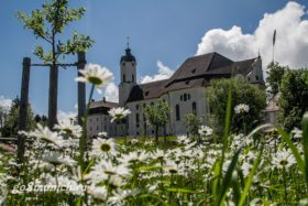 Церковь Визкирхе фото