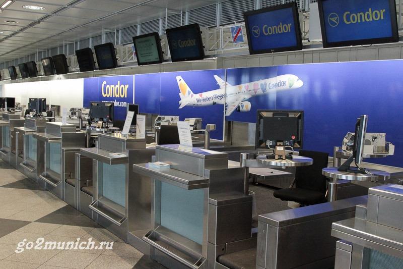 Киев в аэропорт Борисполь  vezuby